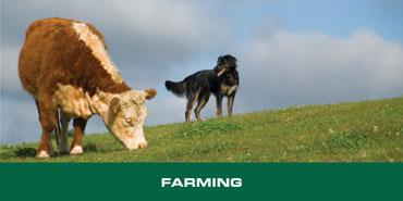 Taurus Farming Series Tool Belts